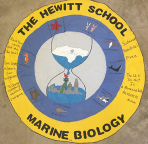 The Hewitt School