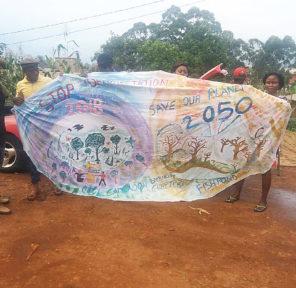 Cameroon School (2)