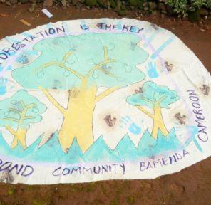 Cameroon School (4)
