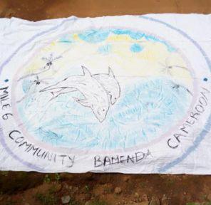Cameroon School (10)