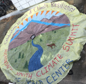 Youth Climate Summit at Wild Center (2 Parachutes)