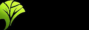 SustyVibes (3 Parachutes)
