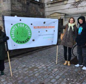 FFF Copenhagen (8 Parachutes)