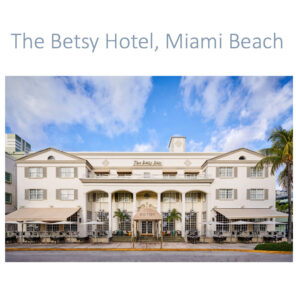 PLANET eARTh PROJECT at the Betsy Hotel Miami Beach during Art Basel (14 Parachutes)